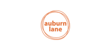 Image of W STUDIO being featured as a fun piece of the IDS show at 2018 in Auburn Lane online publication.